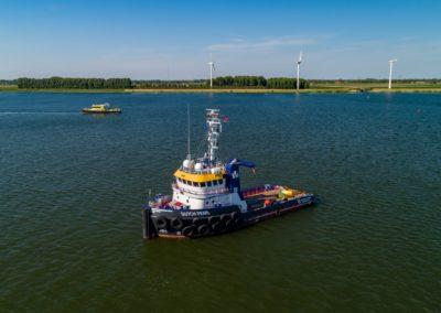 Dutch Pearl - 15