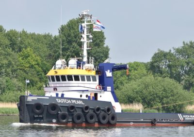Dutch Pearl - 12